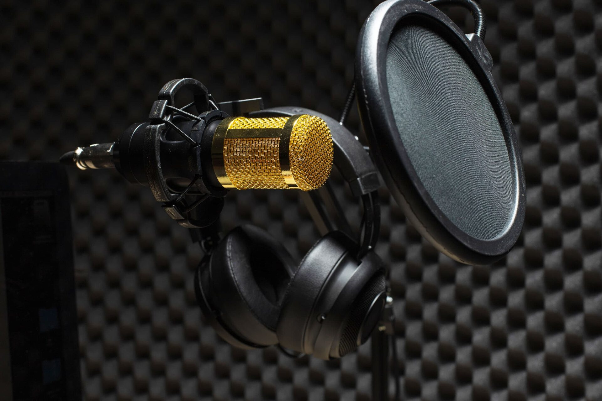 Pro microphone with pop filter